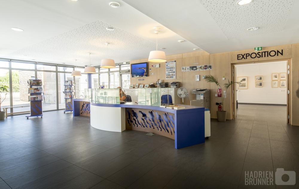 Debarre-forest-architectes-office-tourisme-damgan